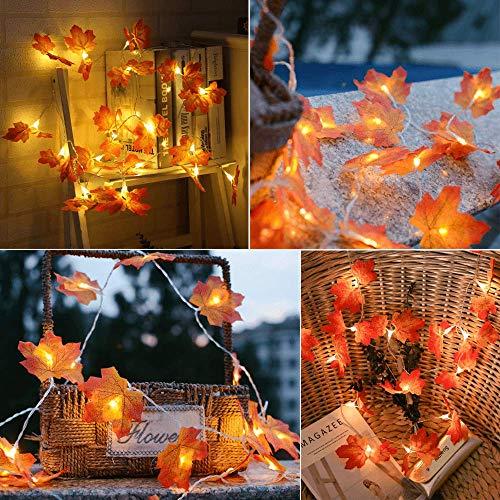 Zorara Ahornblatt Lichterketten, 4M40 LED-Lichterketten aus Ahorn, DeZorara korativer Herbst, Thanksgiving-Dekoration und Weihnachtsbeleuchtung (weiß) (weiß)