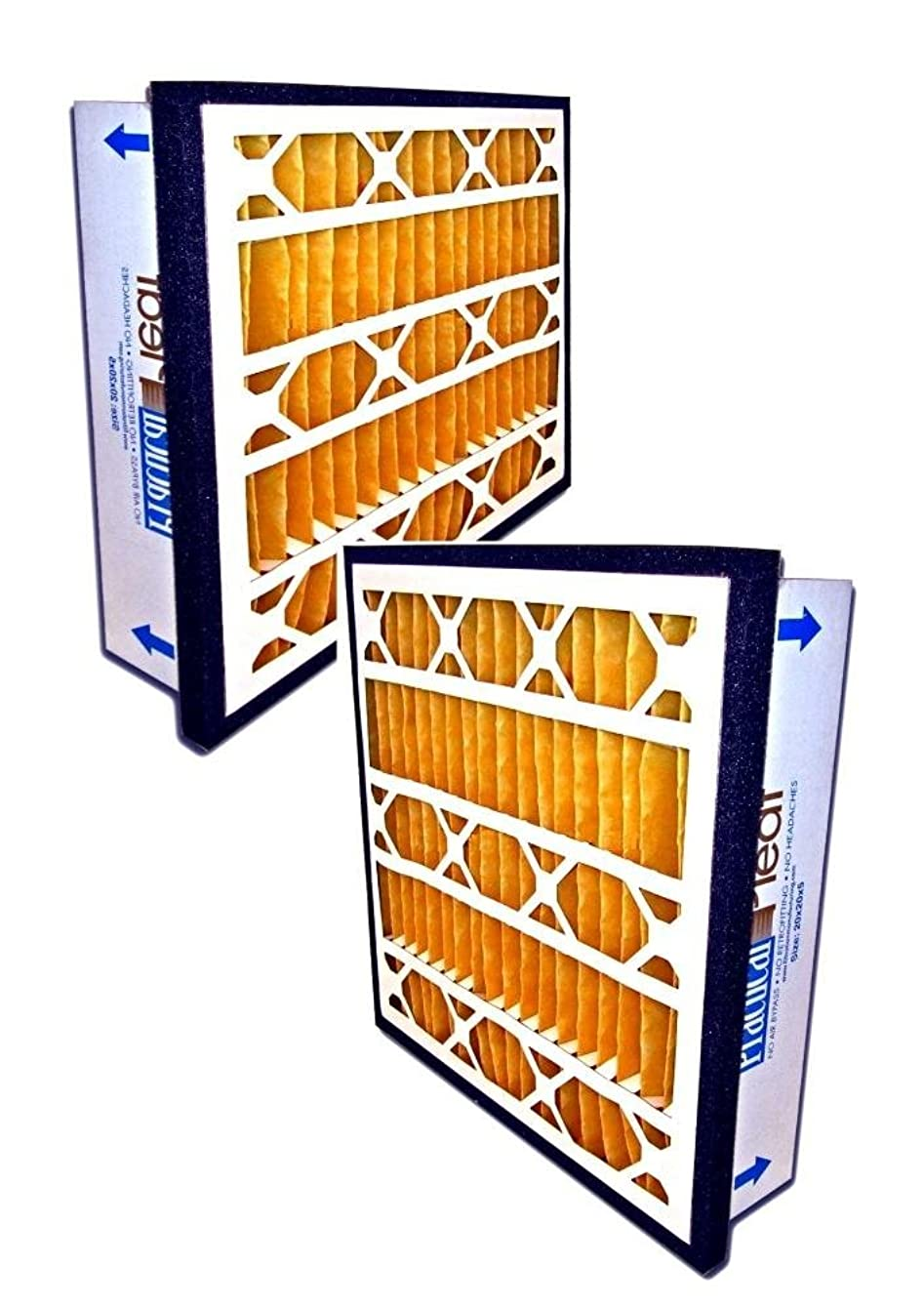 Filtration Manufacturing Practical Pleated Air Filter (2-Pack) - 16