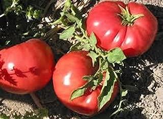 German Pink Heirloom Tomato 30 Seeds 1-2 Lb Fruits Meaty W/few Seeds Good Flavor