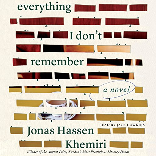 Everything I Don't Remember audiobook cover art
