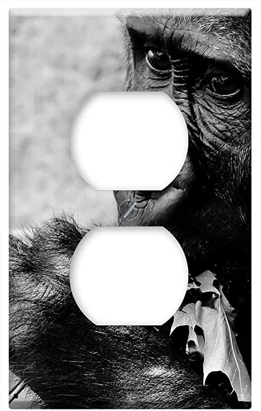 Switch Plate Outlet Cover Gorilla Feeding Hungry Greedy Zoo Hellabrunn Feed 3