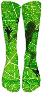 Biología Animal Frog Leaf Calcetines de entrenamiento Tripulación Calcetines deportivos Calcetines largos de fútbol deportivos Suaves para hombres Mujeres