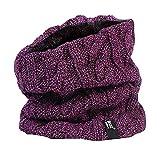 HEAT HOLDERS - Femme chaud intérieur polaire cache-cou snood (Violet)