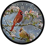 Chaney Instruments AcuRite 01597 12.5-Inch Wall Thermometer, Cardinals