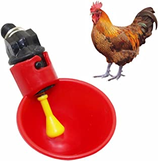Petsbaby 2Pcs Chicken Drinker Cups, Quail Pigeon Drinking Bowl, Poultry Raising Equipment