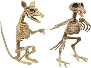 Nikki's Knick Knacks Rat and Bird Skeleton Halloween Decoration