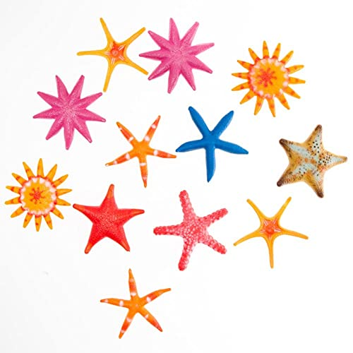 Starfish Decorations Amazon Com