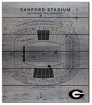 "NCAA Pallet Pride ""Stadium Seating Chart"" Wood Sign"