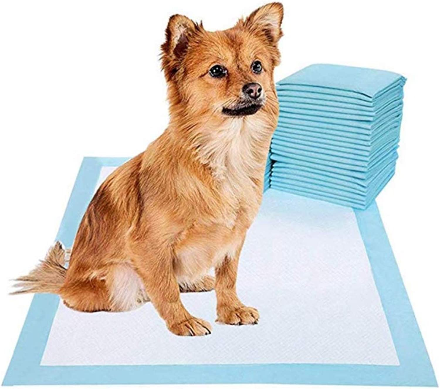 60X60cm Puppy Training Pads Dog Pee Pad for Potty Dogs & Cats Doggy Pet Supplies for Puppies All Absorbent Disposable Doggie inDoors Piddle Absorbent LeakProof Urine Holder,60  90cm