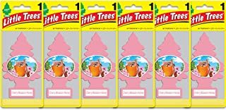 Little Trees Air Fresheners, Singles, Cherry Blossom Honey (Pack of 6)