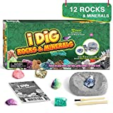 Dr. Daz Mineralien Steine Ausgrabungsset für Kinder Mineralogie Spielzeug Party Braben Kit...