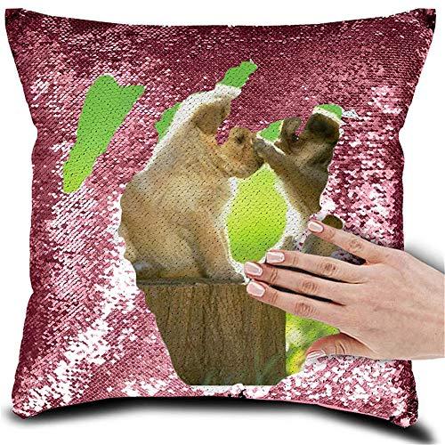 Almohada de Lentejuelas de Foto Personalizada Personalizada Almohada de Lentejuelas de Sirena Reversible Magic Pillowcase(Rosa3 Almohada + Funda de Almohada Lado único)