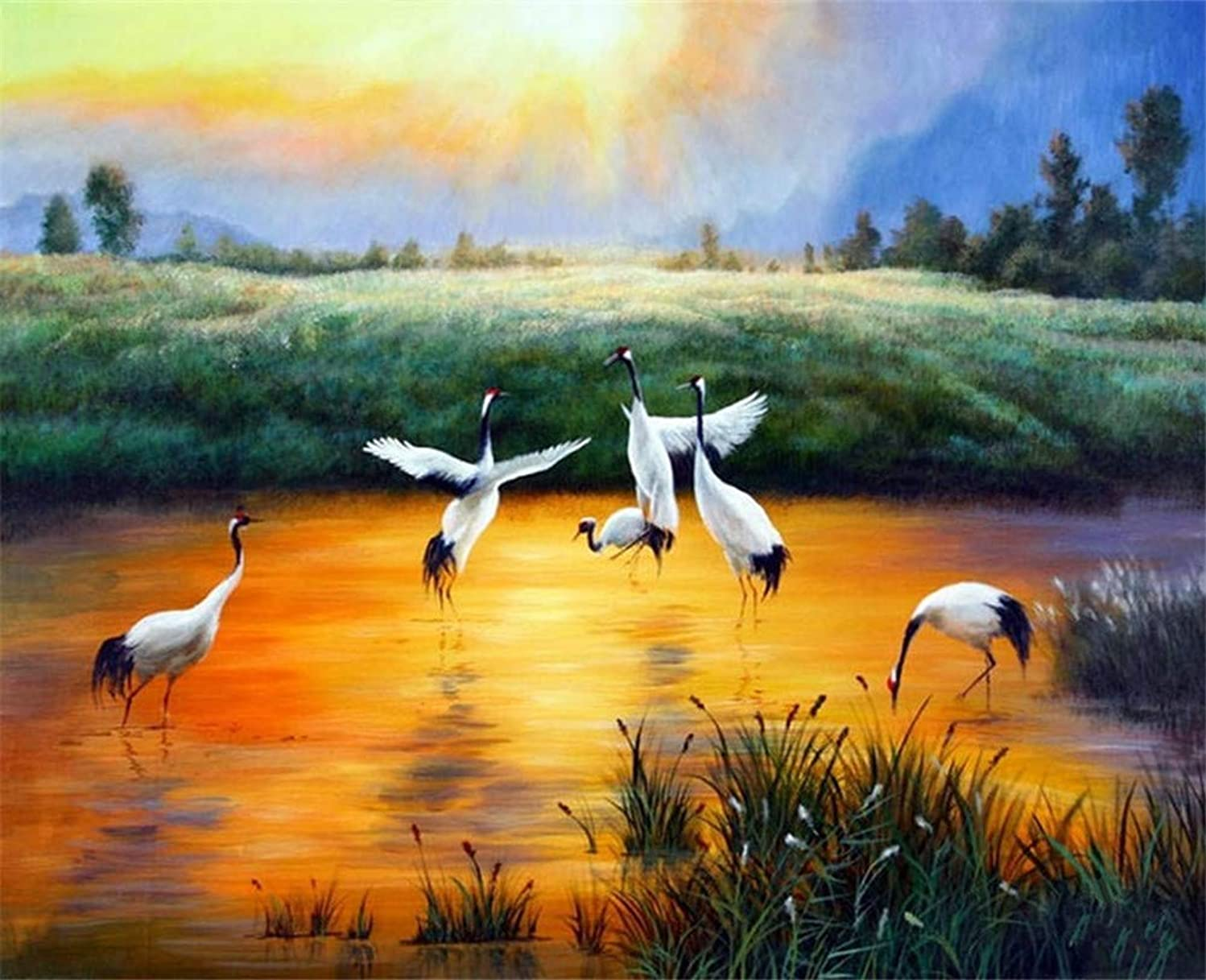 DIY Oil Painting kit, Paint by Numbers kit for Kids and Adults - Cranes 16x20 inches (Framed)