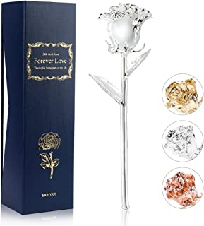 Ejoyous Silver Rose Real Rose Dipped with Silver Wedding for Wife Mom Her Women on 10th 25th 50th Anniversary Birthday Valentines Halloween Thanksgiving Day Christmas, Silver Plated