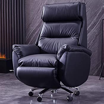 Feceyq Ergonomic High Back Executive Office Chair with Thick Padding Headrest and Armrest Home Office Chair with Tilt Function, Black