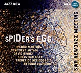 Spider's Egg