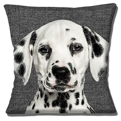 Dalmation Puppy Dog Photo Print Close Up on Charcoal Texture Print - 16' (40cm) Pillow Cushion Cover