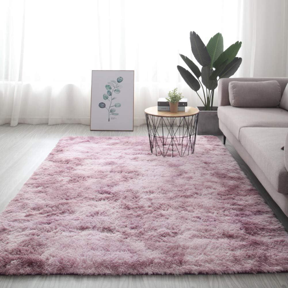 WYMBK Reservation Furry Bedroom Area Rug shag Ultra Soft Living Room Fluffy half