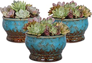 Details about  /JF/_ AG/_ IC 5Pcs Colorful Mini Iron Potted Planter Flower Succulent Plant Pot