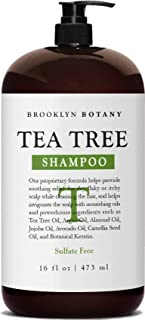 Brooklyn Botany Tea Tree Oil Shampoo For Dry Itchy & Flaky Scalp - Sulfate Free Hair Cleanser - 16 oz