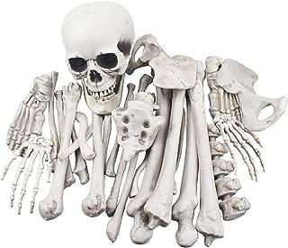 halloween skeleton bones