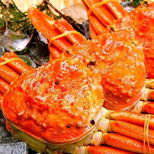 海夢 ズワイガニ 特大 厳選ビッグサイズ 贈答 ギフト 天然 ずわい蟹 姿 約1kg×2尾