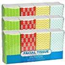 Pocket Sized Travel Facial Tissue, 24 Packets, 216 Sheets, Geometric Print