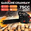 Morocca 6000W 20''Bar 75CC Gasoline Chainsaw Gas Powered Wood Cutting Chain Saw 2 Cycle