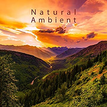 Natural Ambient: Deep Voive of Nature