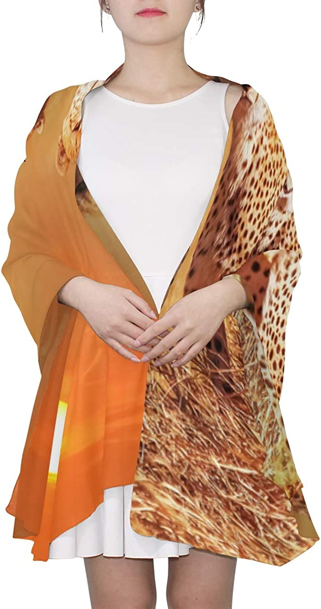 Colored Scarfs For Women Cheetah Group Serengeti National Park Sunset Colorful Scarfs For Women Evening Wrap Shawl Lightweight Print Scarves Womens Scarf Summer Womens Fashion Scarfs Lightweight