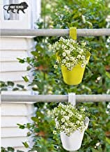 JRM's Garden and Balcony Decorative Hanging Railing and Table Flower Planter Pot (Set of 2)