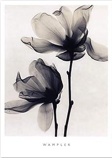 Cartel floral gris claro de la pintura del arte de la pared para la decoración casera de la sala de estar 30x40cm