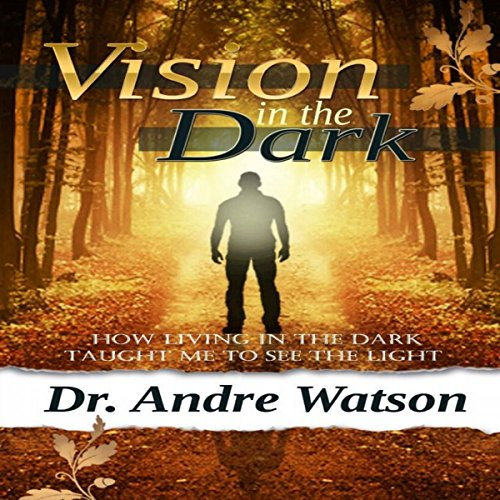 Vision in the Dark: How Living in the Dark Taught Me to See the Light audiobook cover art