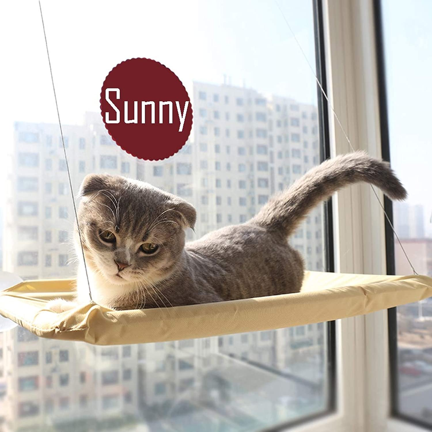 Cat Window Bed Cat Hammock Window Suction Cup Hanging Nest Summer Pets Cat Climbing Frame Sunbathing + Daydreaming 55×35CM Can Bear 20KG