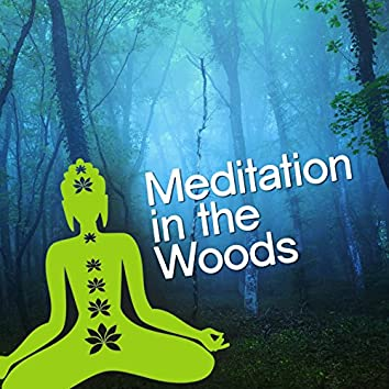Meditation in the Woods