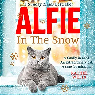 Alfie in the Snow audiobook cover art