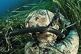 Zoom IMG-2 cressi apache fucile pesca subacquea