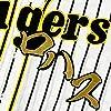 阪神 タイガース 刺繍ワッペン ロハスジュニア 毛筆 名前 応援 ユニフォーム ロハス Jr