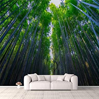 Modern 3D PVC Design Removable Wallpaper for Bedroom Living Room The beautiful bamboo forest rises above the sky Wallpaper...