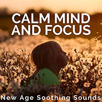 Calm Mind and Focus: New Age Soothing Sounds for Better Concentration