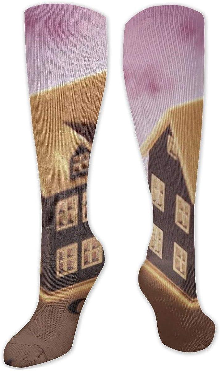 Miniature House Symbol% Knee High Socks Leg Warmer Dresses Long Boot Stockings For Womens Cosplay Daily Wear