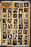 1art1 51161 Harry Potter - 7, Und Die Heiligtümer Des