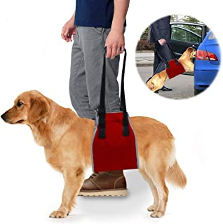 Dog Lift Support Sling & Rehab Harness, Soft Assist & Adjustable Nylon Straps Helps Pet for Arthritis, Poor Stability,Joint Injuries, Rehabilitation Mobility,Recovery, Medium:25-55lb, Large:55-77lb