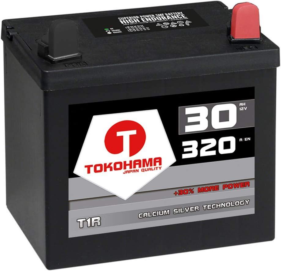 Tokohama T1r Rasentraktor Batterie Aufsitzmäher 12v 32ah 310a Aufsitzrasenmäher Starterbatterie Motorrad Wartungsfrei Ersetzt 30ah Auto