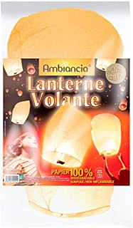 Orange Woodwick 92044 Bougie Ovale Verre 9,9 x 9,8 x 11,9 cm