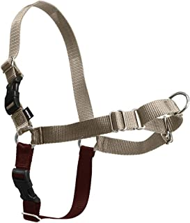 Best soft touch dog harness Reviews