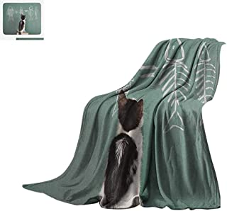 Luoiaax Kitten Custom Design Cozy Flannel Blanket Cat Doing Arithmetic with Fish Problem on a Blackboard for Kitty to Solve Fishbone Digital Printing Blanket 80