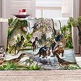 N \ A Wohndecke Jura und Dinosaurier Weiche Flauschige Plüsch Decke, Flanell Fleecedecke TV Hautfre&lich Kinder Kuscheldecke für Sofa, Camping, Reise 27.5x39 inch