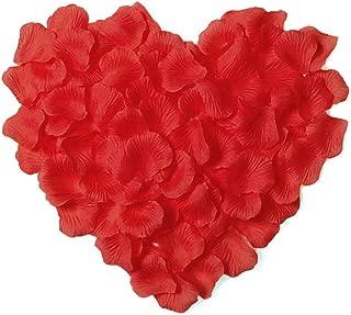 3000 Piezas P/étalos de Rosa Hermosos Rojo Flores de Rose para el banquete de boda y la atm/ósfera rom/ántica Perfecta D/ía de San Valent/ín /& Bodas Decoraci/ón