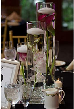 """WGV Tall Cylinder Glass Vase, 3"""" W x 16"""" H, [Multiple Sizes Choices] Clear Bud Candle Holder Planter Terrarium for We"""
